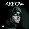 Arrow - Tribute  artwork