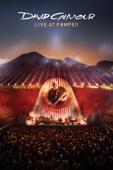 David Gilmour - David Gilmour: Live At Pompeii  artwork