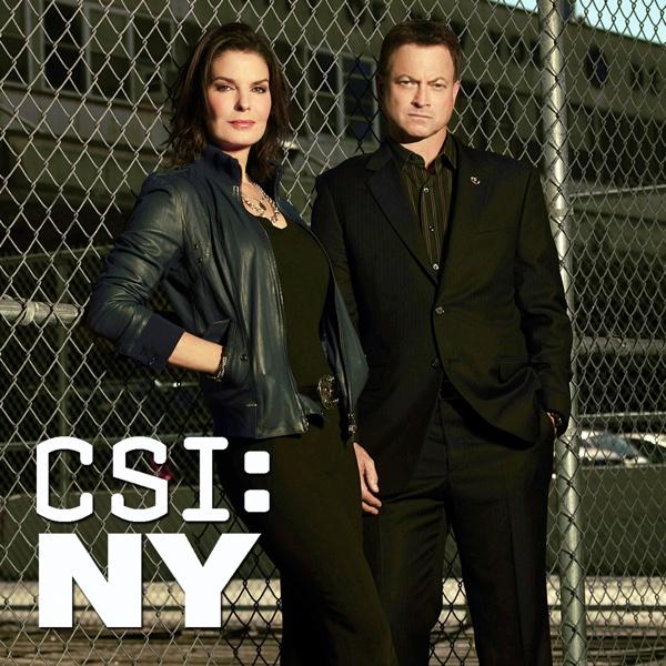 Watch CSI: NY Episodes | Season 9 | TVGuide.com