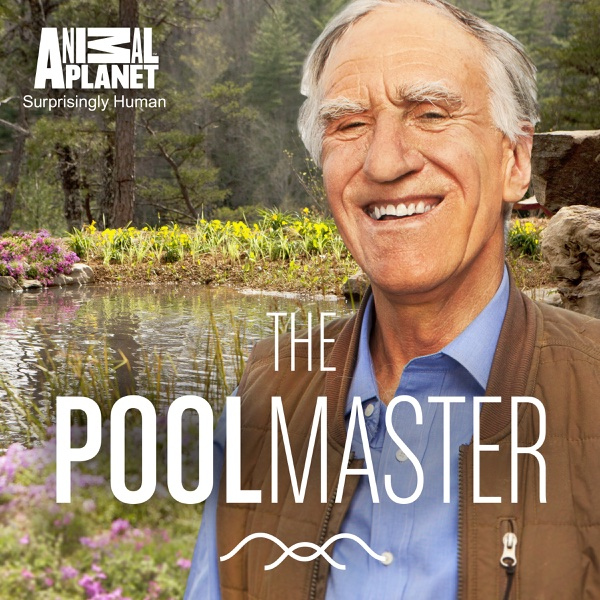 Watch the pool master episodes season 1 for Community tv show pool episode