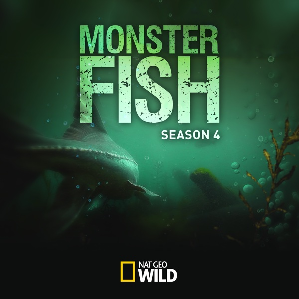 Watch monster fish season 4 episode 4 600 lb goldfish for Monster fish show