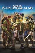 Teenage Mutant Ninja Turtles Full Movie Telecharger