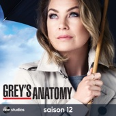 Grey's Anatomy, Saison 12