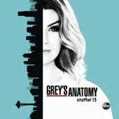 Grey's Anatomy, Season 13 (subtitled)