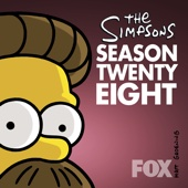 The Simpsons, Season 28 - The Simpsons Cover Art