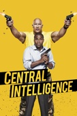 Rawson Marshall Thurber - Central Intelligence  artwork