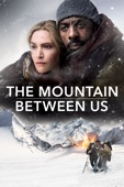 The Mountain Between Us - Hany Abu-Assad