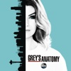 Who Is He (And What Is He to You)? - Grey's Anatomy Cover Art